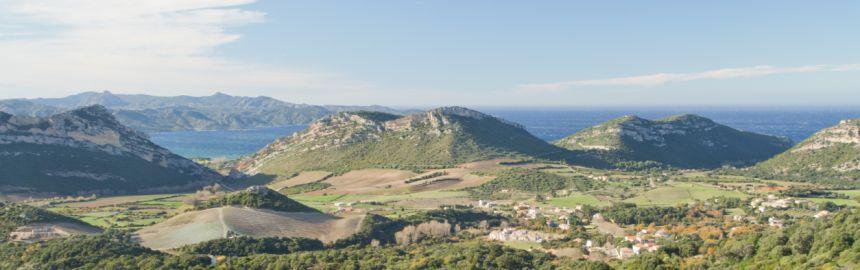 Les Safranières D'Oletta Safran Bio de Corse